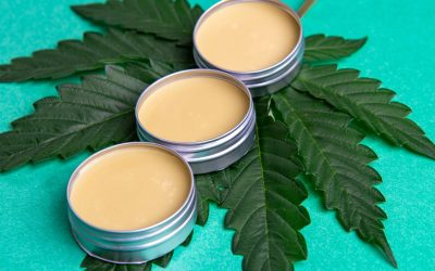 CBD Salve: Everything You Need to Know