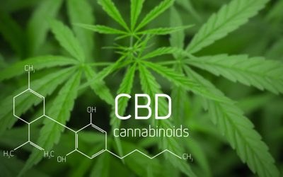 CBD could treat inflammation caused by COVID-19, study shows
